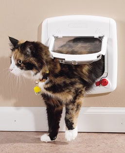 Cat flap article and installation guide diy fitting instructions