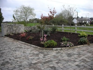 Paving with bark mulch